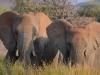 20120802_Swakopmund_Etosha