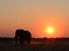 20120806_Etosha_Grootfontein